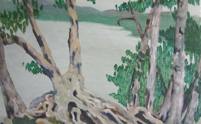 Sherman Birch Tree with Roots at Sagamore Oil on Canvas 11 x 14 inches 2014