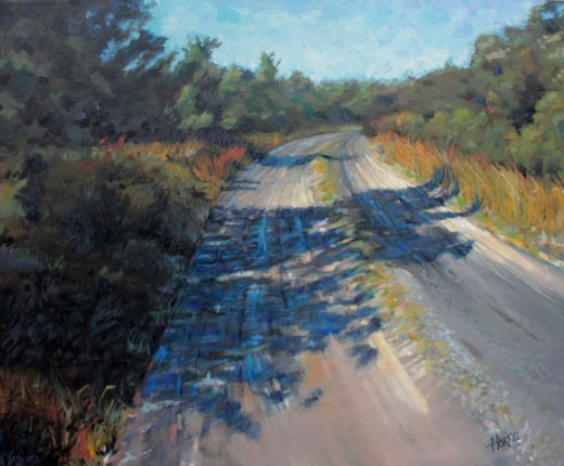 Beach Road, Ocracoke by Stephen Horne
