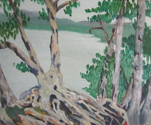 Sherman - Birch Tree with Roots at Sagamore - Oil on Canvas 11 x 14 inches 2014