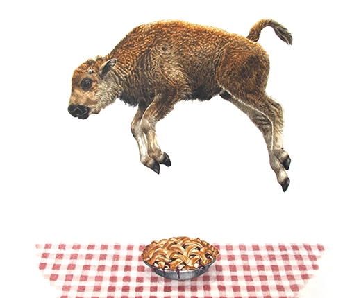 Emily White - Fourth of July/Baby Bison Jumps Over Pie
