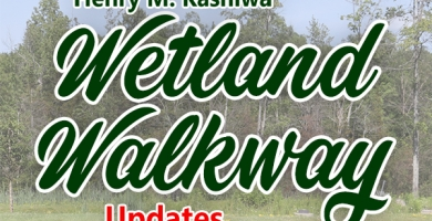 Wetland Walkway Placeholder Logo online version