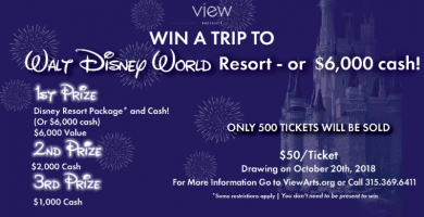 disney raffle facebook ad